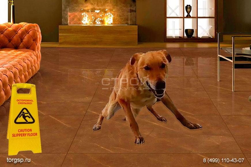 Скользкий пол для собаки - быстрые решения.