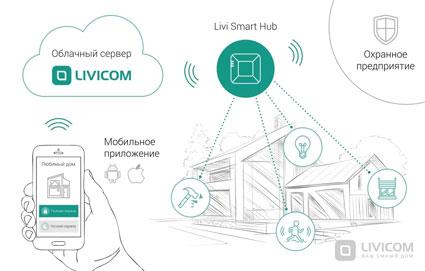 Облачный сервер Livicom.