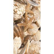 Sea Breeze Shells Е11411 30х60 см декор настенный  блеск