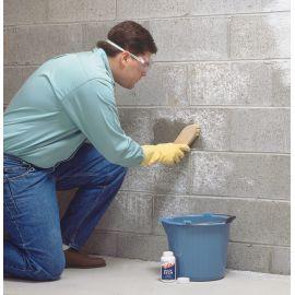 Очиститель бетона и камня Etch