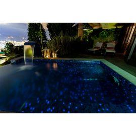 Fosfo Delphinus 2,5х2,5 см люминесцентная мозаика Ezarri в бассейне
