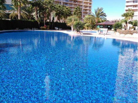 Мозаика Blueberries Topping (Испания, Ezarri) для отделки бассейна
